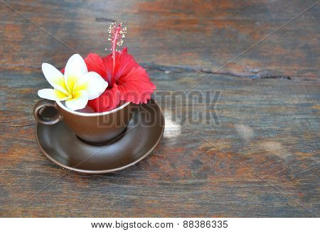 brown cup and saucer with flowers frangipani and hibiscus