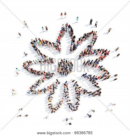 People in the shape of a flower.
