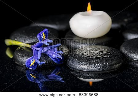 Beautiful Spa Concept Of Blooming Iris Flower, Candles And Black Zen Stones On Reflection Water, Clo