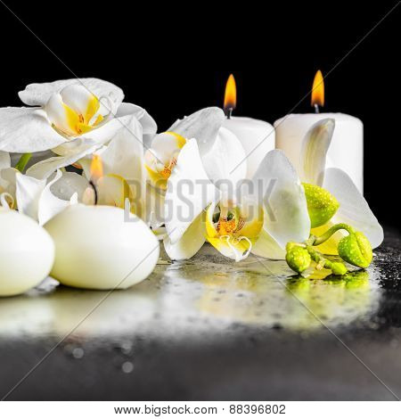 Beautiful Spa Composition Of Blooming White Orchid Flower, Phalaenopsis With Dew And Candles On Blac