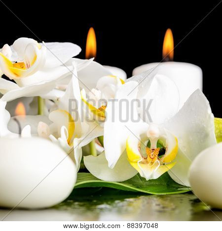 Beautiful Spa Concept Of Blooming White Orchid Flower, Phalaenopsis, Green Leaf With Dew And Candles