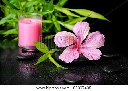 Beautiful Spa Concept Of Pink Hibiscus Flower, Twig Bamboo And Pink Candle On Zen Basalt Stones With