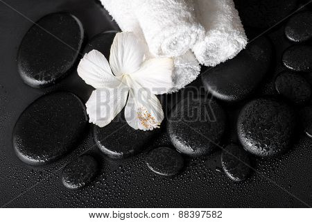 Spa Concept Of White Hibiscus Flower And Towels On Zen Basalt Stone With Drops, Closeup