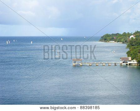 ocean with lush green coastline
