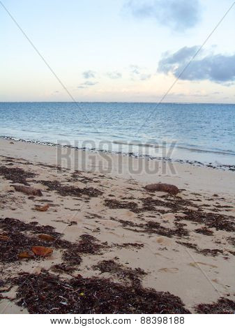 Empty beach at dusk with seaweed