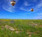 pic of golan-heights  - Two huge and beautiful balloons fly over a flowering field - JPG