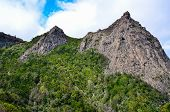 pic of canary-islands  - Picturesque forest and the rock on the island of La Gomera Canary Islands Spain - JPG