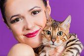 image of bengal cat  - Young beautiful girl posing in the studio - JPG