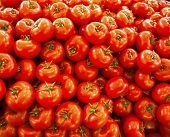 stock photo of stall  - real red organic tomatoes at market stall - JPG