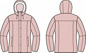 picture of down jacket  - Vector illustration of winter down jacket - JPG