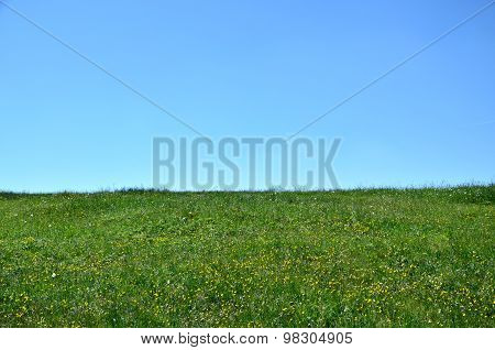 Horizon Of Meadow And Sky
