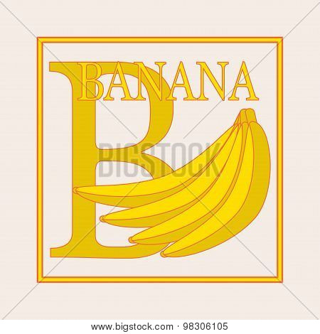 B - Banana, Alphabet. English Capital Letter B. Vector Flat Illustration Of Banana Branch. Education