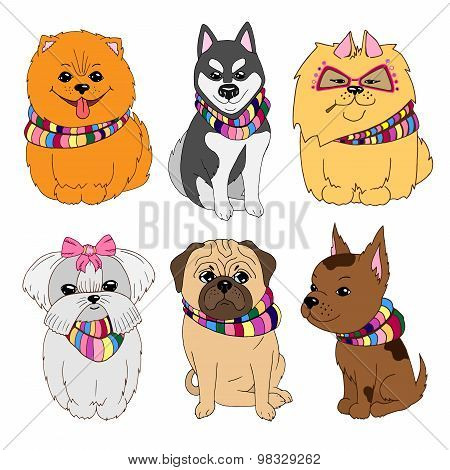 Set Of Cute Dogs Illustrations: Pug, Pomeranian Spitz, Husky, Maltese, Chihuahua.