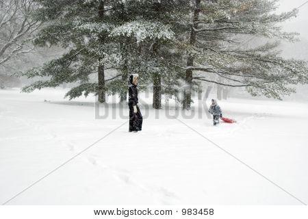 Sledding In The Park