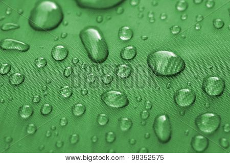 Closeup Of Rain Drops