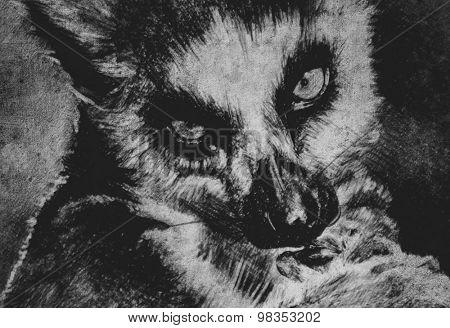 Illustration made with digital tablet, lemur in sepia on vintage paper, handmade illustration