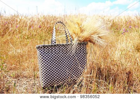 Beautiful bag with sheaf in field