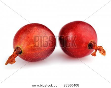 Fresh gooseberries isolated on white