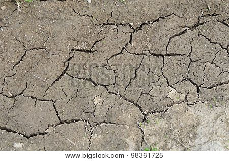 The Dried-up Dirt With Cracks