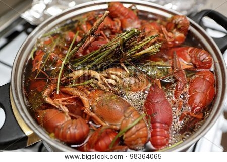 Cooking Of Crayfish With Herb