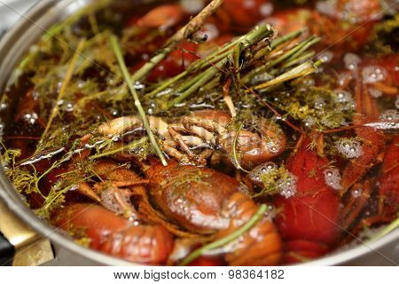 Cooking Of Crayfish