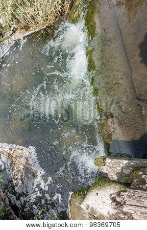 Freshwater Stream 5