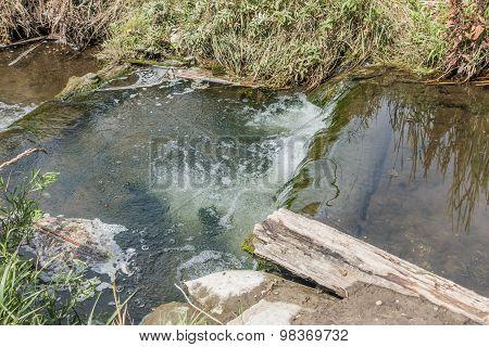 Freshwater Stream 7