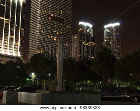 Miami Downtown Night Scene
