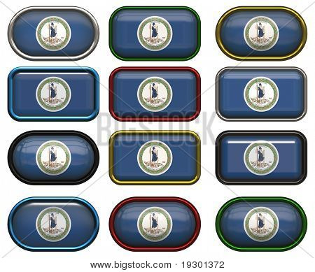 twelve Great buttons of the Flag of Virginia