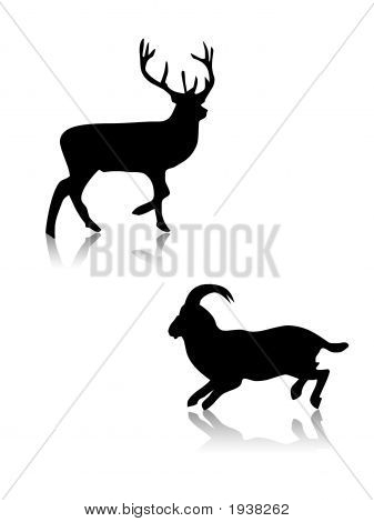 Deer And Got Silhouettes,Shapes,Vector