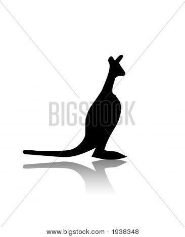Silhueta de canguru