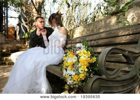 The groom and the bride on a bench