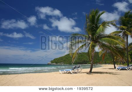 Picturesque Caribbean Beach