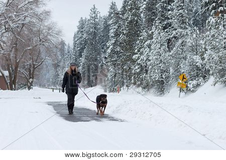 Female Walking A Dog