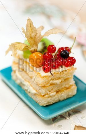 Tasty Baked Fancy Cake With Currant