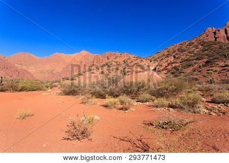 Bolivian Canyon Near Tupizaboliviaquebrada De