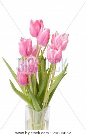 Zoom On A Bunch Of Tulips In A Vase