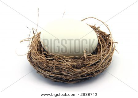 Egg On Nest