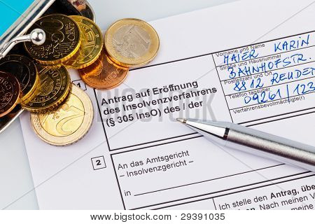 the application for a bankruptcy for private individuals in germany