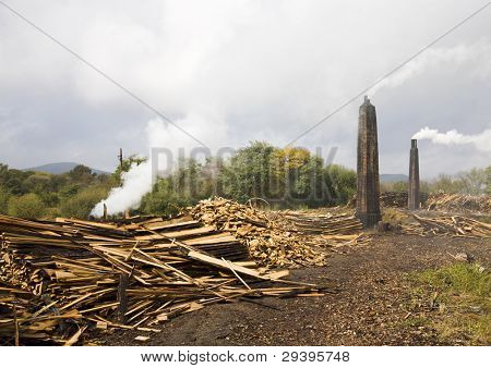 fábrica de procesamiento de madera.Se quemará estos leña carbón.