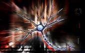 foto of neuron  - Digital illustration of  neuron  in colour  background - JPG