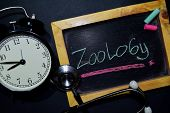 The Words Zoology Handwriting On Chalkboard On Top View. Alarm Clock, Stethoscope On Black Backgroun poster