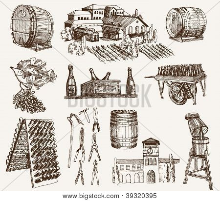 winemaking. the production of sparkling wines