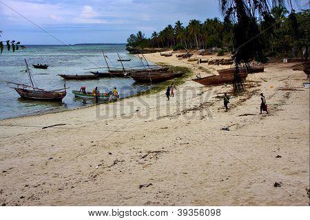 Kizimkazy Bay Tanzania Zanzibar