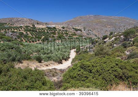 Zakros gorge at Crete island, Greece.