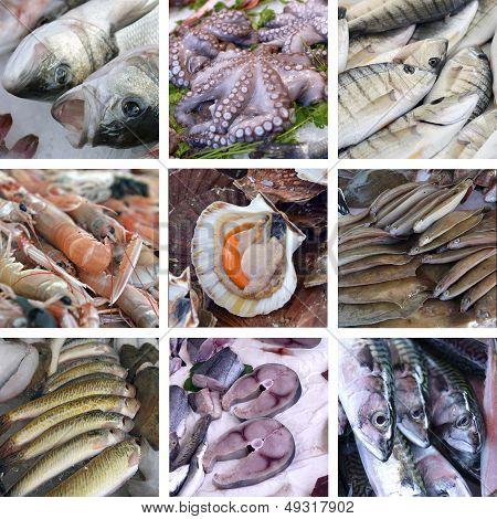 Set Of Images Showcases The Fishmarket