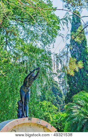 Arboretum In Sochi, Russia.