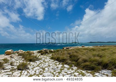 Rocky Limestone Coastline At Devil's Bridge Antigua