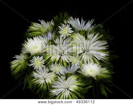 Stylized Rendering Of White Flowers Bouquet