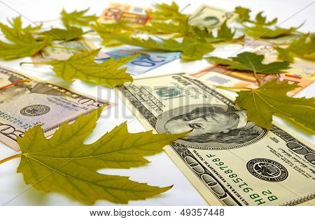 Dollars, Euro And Autumn Leaves